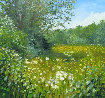 Meadows & Hedgerows