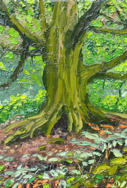 Trees & Woodland